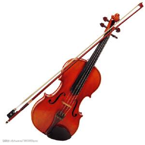小提琴图集