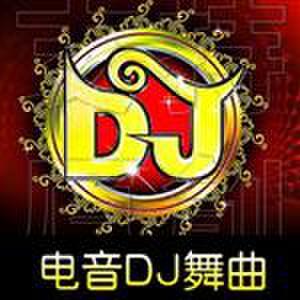 DJ 舞曲  摇头电10